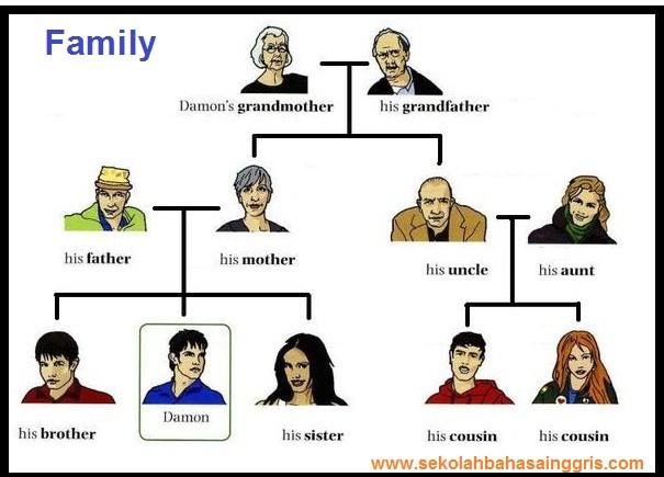 33 Vocabulary Family Tree : Kosa Kata Keluarga Dalam Bahasa Inggris