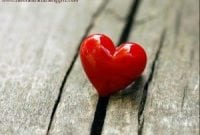 Cara Menyatakan Cinta dalam Bahasa Inggris ( Expression of Love ) Beserta Artinya