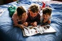Pengertian Konsep Pararelisme Dalam Reading Text Bahasa Inggris