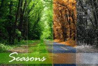The Seasons : Kumpulan Nama Cuaca dan Iklim dalam Bahasa Inggris beserta Contoh Kalimat