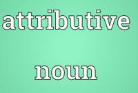 Pengertian dan Contoh ATTRIBUTIVE NOUN dalam Kalimat Bahasa Inggris
