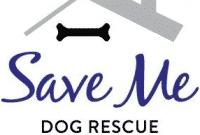 """Perbedaan Dan Persamaan """"Rescue Dan Save"""" Dalam Bahasa Inggris Beserta Contoh"""