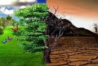 Kumpulan Kata Mutiara Bahasa Inggris Tentang Lingkungan Beserta Artinya